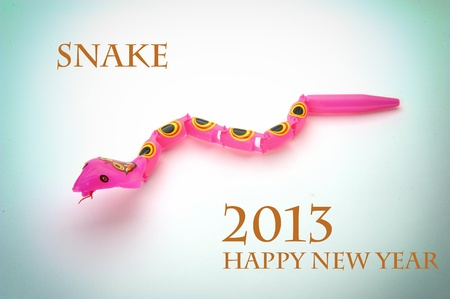 Happy new year 2013,year of the snake Stock Photo - 14867926