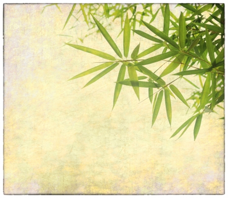 korean design: bamboo on old grunge antique paper texture Stock Photo