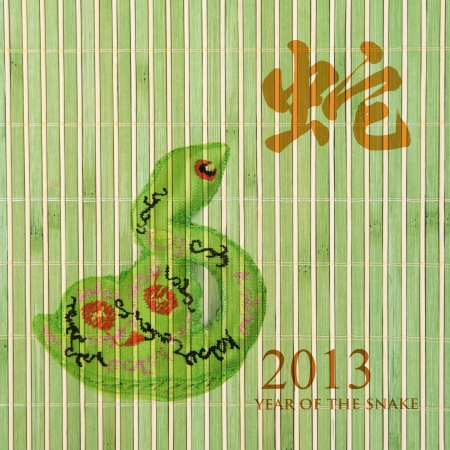 Chinese Calligraphy 2013 for Year of Snake photo