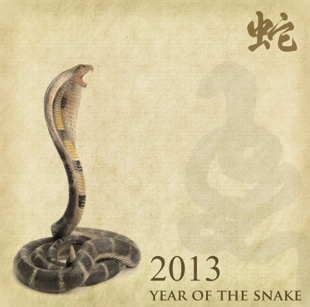 silhouette of New Year Snake 2013 photo