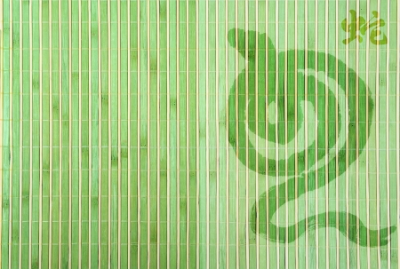 year snake: Chinese Year of Snake on bamboo background Stock Photo