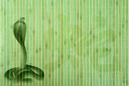 Chinese Year of Snake on bamboo background photo