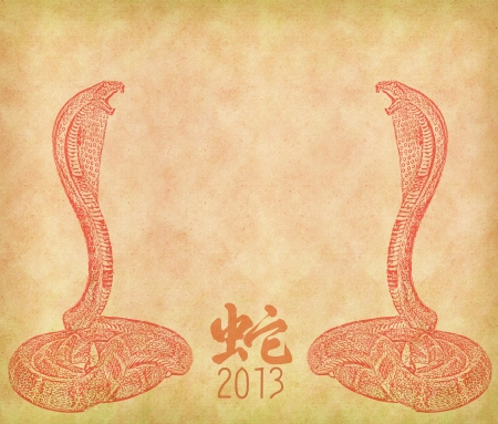 snake calligraphy: Year of the snake design on old paper background,chinese Calligraphy mean snake