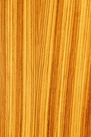 tree wood textures Stock Photo - 15249041