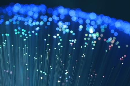 fibra óptica: cable de fibra óptica de la red