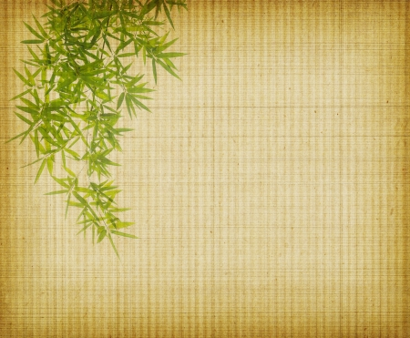 bronze background: bamboo on old grunge antique paper texture Stock Photo
