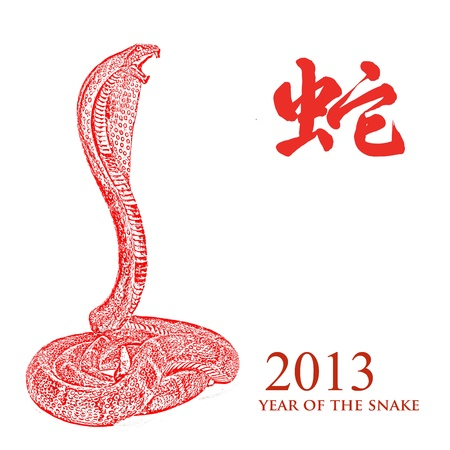 Year of the snake 2013 characteristic photo