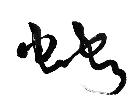 Chinese calligraphy mean snake Stock Photo - 16564446