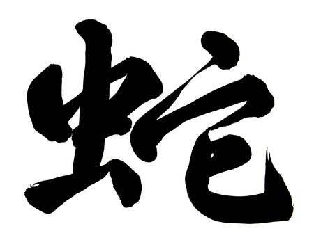 Chinese calligraphy mean snake Stock Photo - 16564441