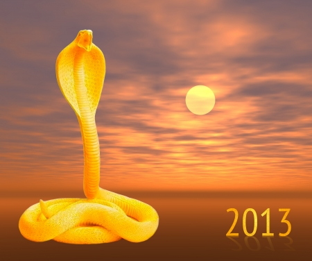 Chinese year of the snake design-golden snake Stock Photo - 16642287