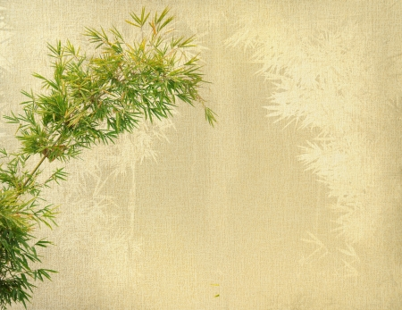 paintings on canvas: chinese bamboo trees with texture of handmade paper Stock Photo