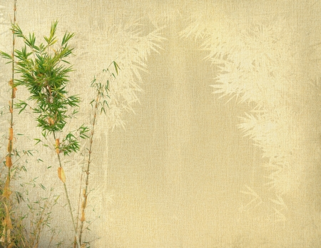 lucky bamboo: chinese bamboo trees with texture of handmade paper Stock Photo