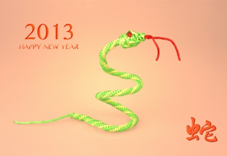 Chinese 2013 Weaving snake design photo