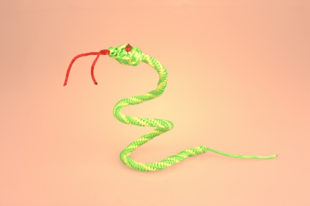 coxcomb:  Weaving snake Stock Photo