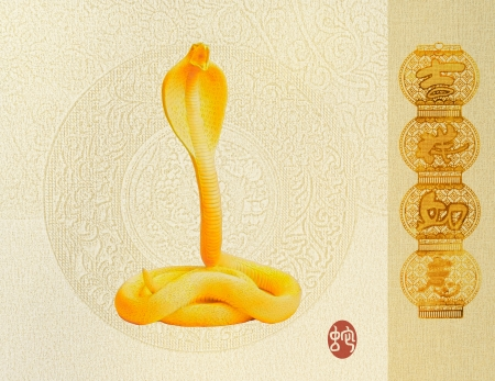 Chinese Calligraphy 2013 - words mean happy Year of the snake Stock Photo - 17057105