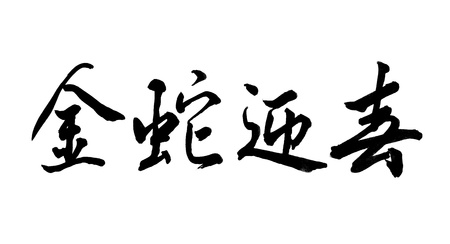 Chinese Calligraphy mean 2013 Year of the snake photo