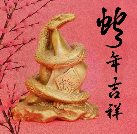 year of snake: Chinese 2013 for Year of Snake design, words mean happy new year
