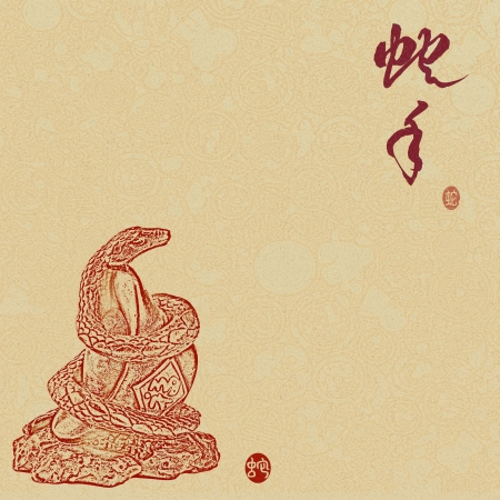 Chinese 2013 for Year of Snake design, words mean happy new year photo