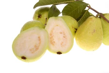 Guava fruit isolated on white background Stock Photo - 18515376