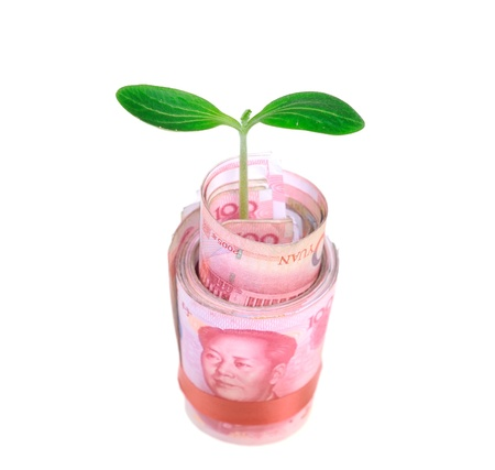 commercial tree care: Green plant leaf growing on money, money of china