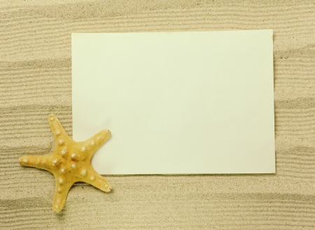 starfish and shells with frame on the beach, vacation memories photo