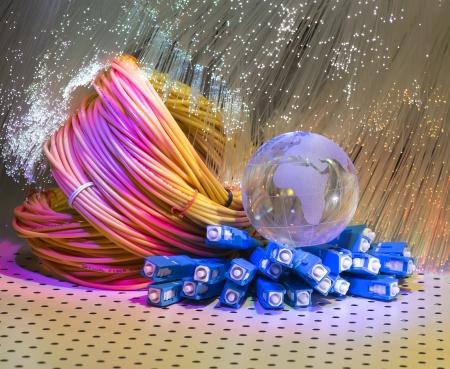 wan: fiber optical network cable