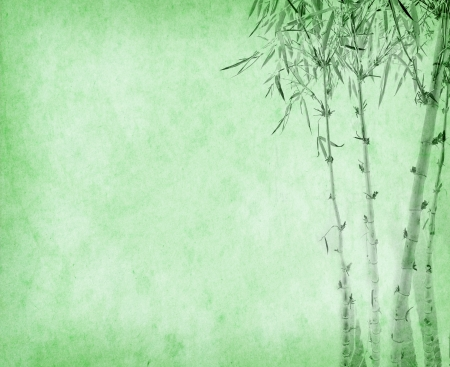 bamboo on old grunge paper texture background photo