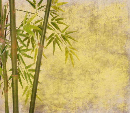 asian art: bamboo on old grunge paper texture background