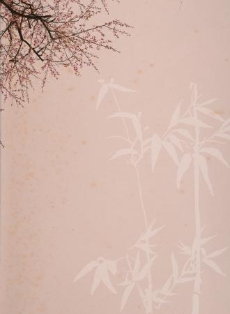 plum blossom on old antique vintage paper background photo