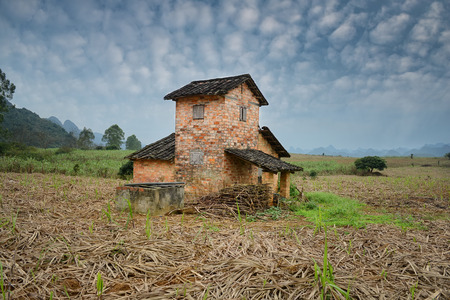 sugarcane: Rural landscape with house in a Field of Sugarcane