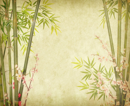 bamboo leaves: bamboo on old grunge paper texture background