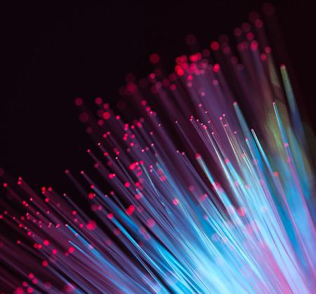 fiber optical network cable photo