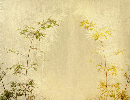 bright paintings: bamboo on old grunge paper texture background
