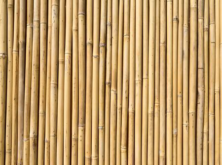 bambou: cl?ture de bambou Banque d'images