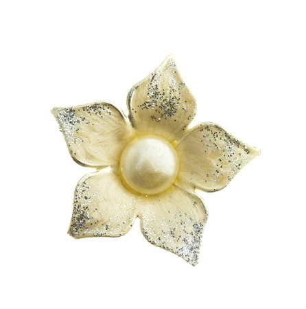 brooch: flower brooch on white background