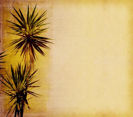 bordure de page: vieux fond de papier avec la feuille de palmier
