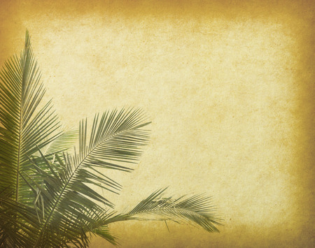old frame: old paper background with palm leaf Stock Photo