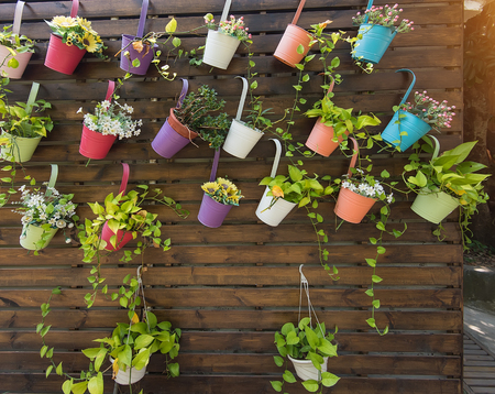 wooden fence: Hanging Flower Pots with fence Stock Photo