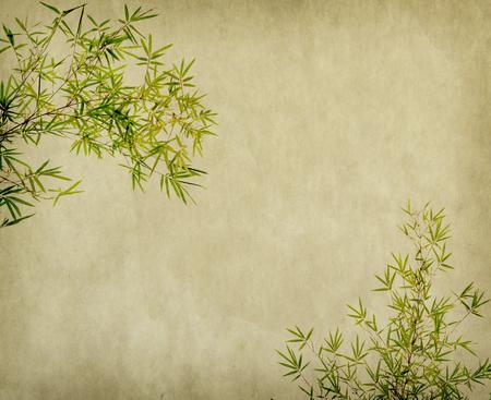 古いグランジ紙テクスチャ背景に竹