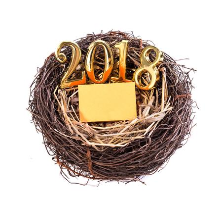 New born 2018 on nest Stock Photo