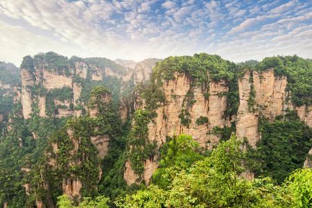 karst pillars at wulingyuan national park zhangjiajie hunan province china
