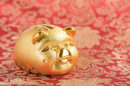 2019 is year of the pig,Golden piggy bank with red background,Chinese new year concept, saving concept and wealth.