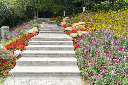 Pathway winding in garden with flowers