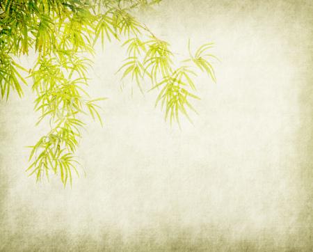 Bambus auf altem Schmutzpapier-Texturhintergrund