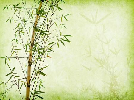 bambù sul vecchio sfondo texture di carta grunge Archivio Fotografico