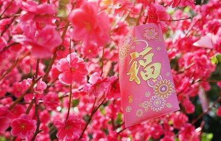 chinese red bag money in chinese new year, chinese wording & seal mean: good bless 版權商用圖片