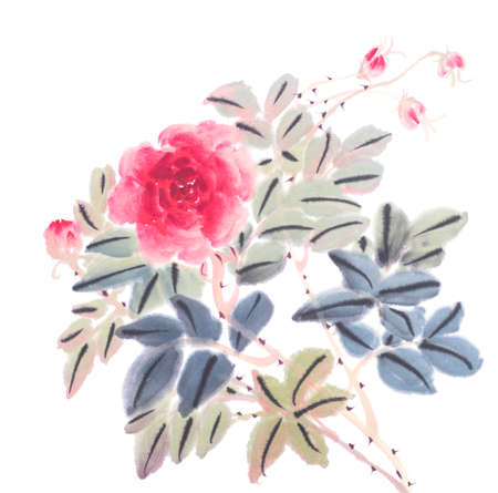 Chinese traditional painting of rose flower on white background