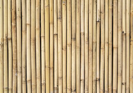 fence made of bamboo sticks