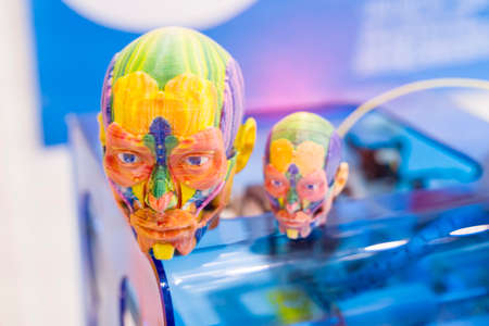 model printed on 3d printer in form of colorful muscles of the face,additive technologies and futuristic concept