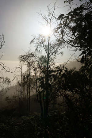 bueutiful moment morning view in ijen crater